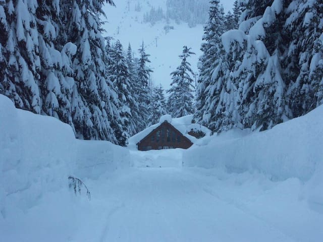 Cozy Cabin at Snoqualmie Pass! - Snoqualmie Pass - Blockhütte