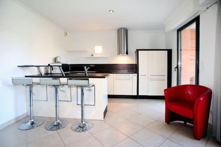 Bel appartement bord de mer Villeneuve Loubet.