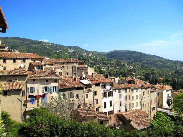 Village of Seillans (5 minutes away)