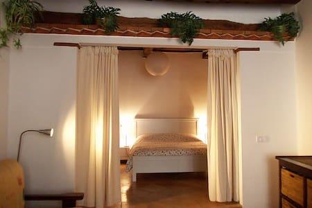 Un nido nella Maremma medievale...