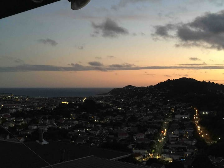 Elevated Sleep-out within Wellington City