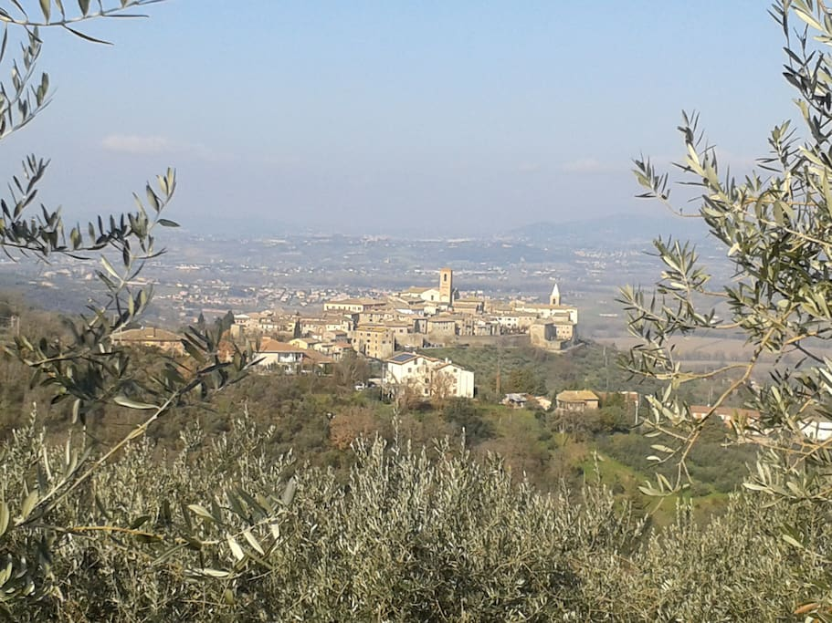 Amazing view of Bettona, surrounded by nature.