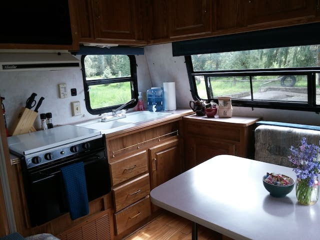 Camper Trailer by Stamp Falls Park - Port Alberni - Camper/RV