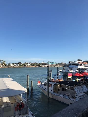 Quaint setting close to BEACH - Seminole - บ้าน