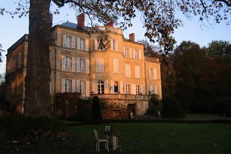 Chateau d'Aubigny - Marseilles-lès-Aubigny