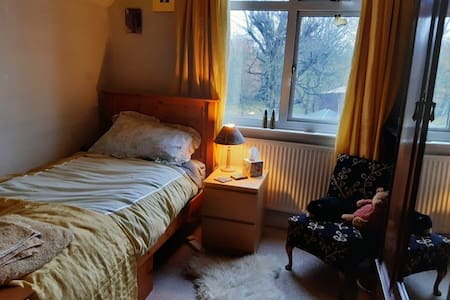 Single room in lovely Edwardian house