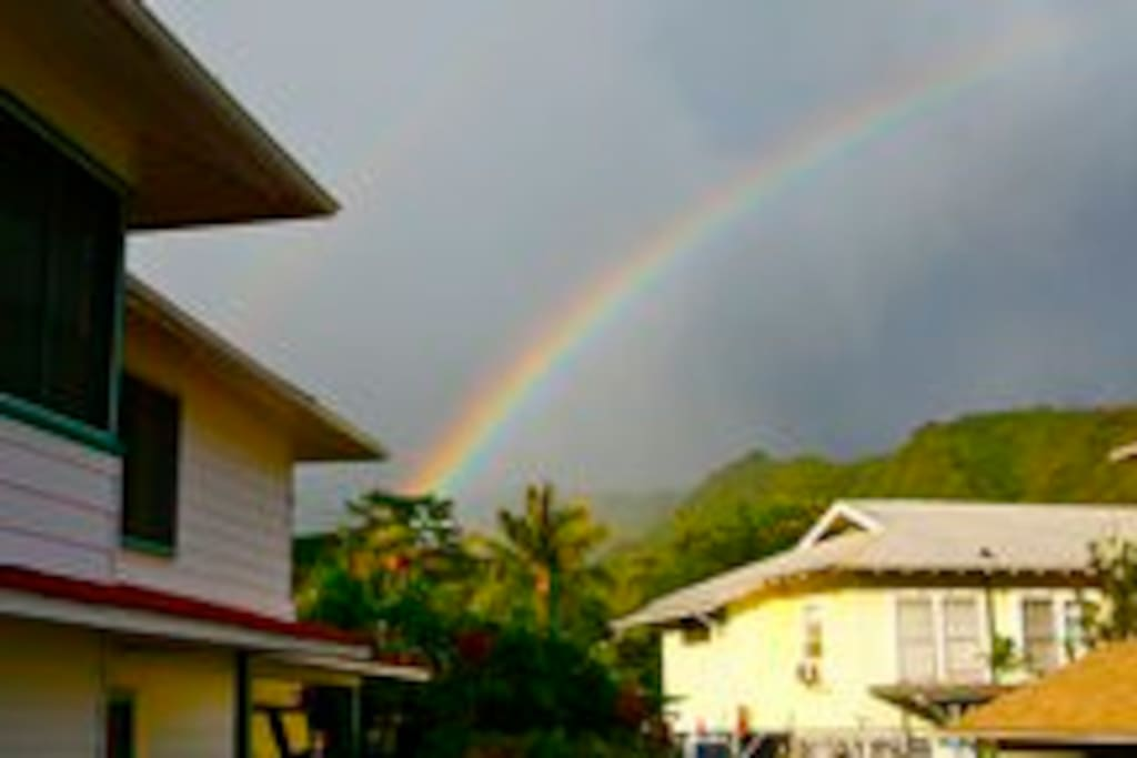 The Manoa mist brings in many beautiful rainbows over our house!