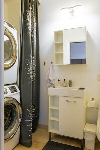 Washer / Dryer in the Master Bathroom.