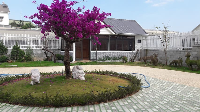 Hoa Giấy Villa - Villa of Flower
