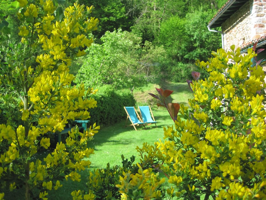 view of the cottage garden riverside