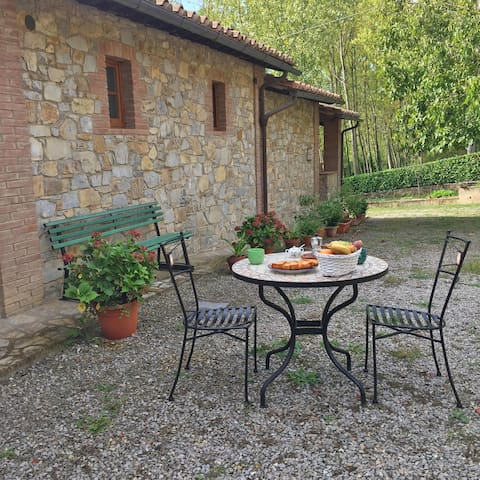 Apartments in the heart of Chianti - Le Ortensie