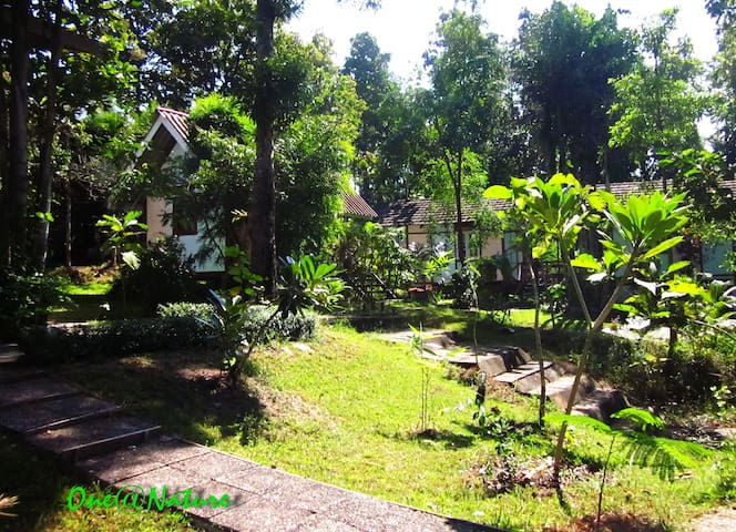 One@Nature Mae Rim, Chiang Mai - Mae Raem - Bed & Breakfast