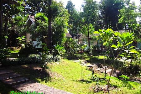 One@Nature Mae Rim, Chiang Mai - Mae Raem - Bed & Breakfast