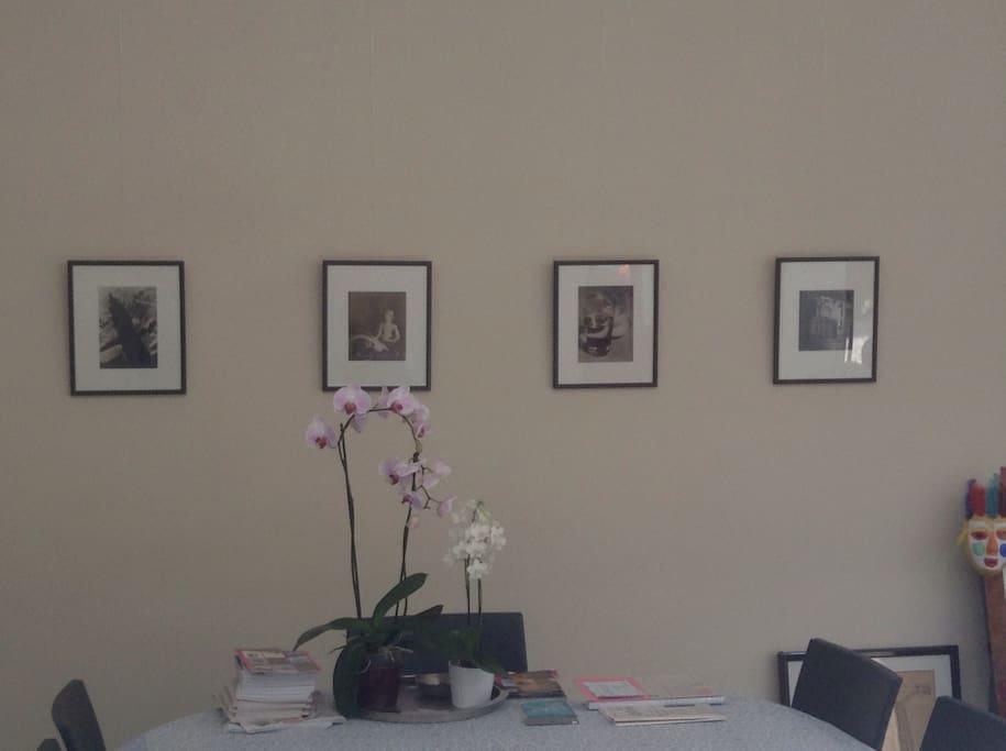 Quelques photos sur le mur