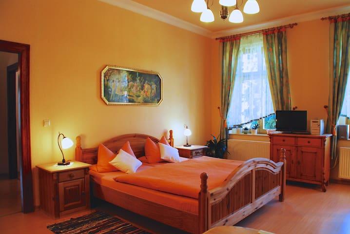 Fantastic Loft Apt w/ Balcony  - Görlitz - Apartamento