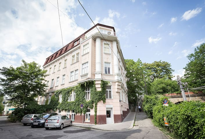 Gemütliches Wohnen in Parknähe - Viyana - Daire