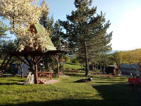 Shisharka spot Tree house