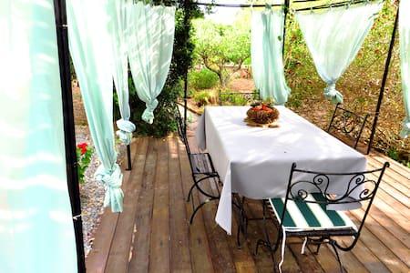 Villa 3700mq garden close beach - Calasetta - Maison