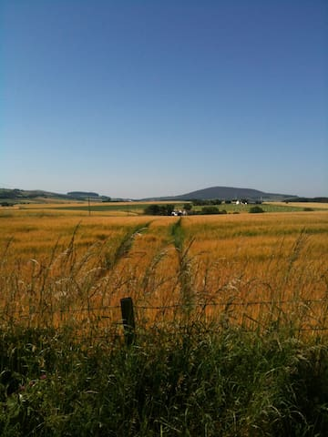 Rural Chaumer Cottage, sleeps 2 - Aberdeenshire - Appartement
