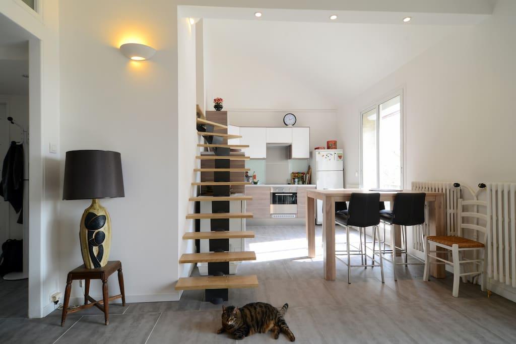 appart design calme lumineux pkg appartements louer. Black Bedroom Furniture Sets. Home Design Ideas