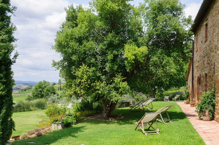 XVIIIth HOUSE  IN HUNTING RESERVE - Montepulciano - Apartamento