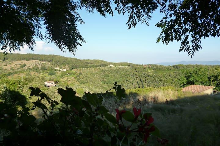 Appartement met prachtig Toscaans uitzicht - Riparbella
