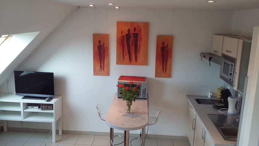 Charmant studio près de Colmar - Oberhergheim - 公寓