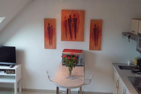 Charmant studio près de Colmar - Oberhergheim - Apartmen