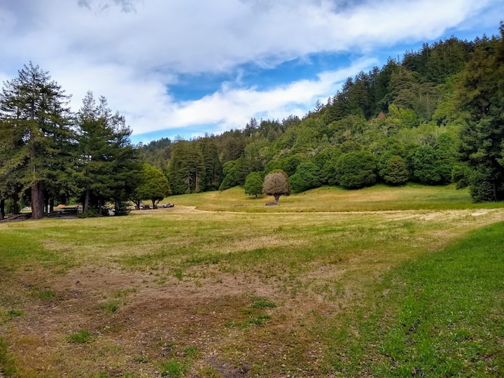 cabin overlooking Soquel Creek