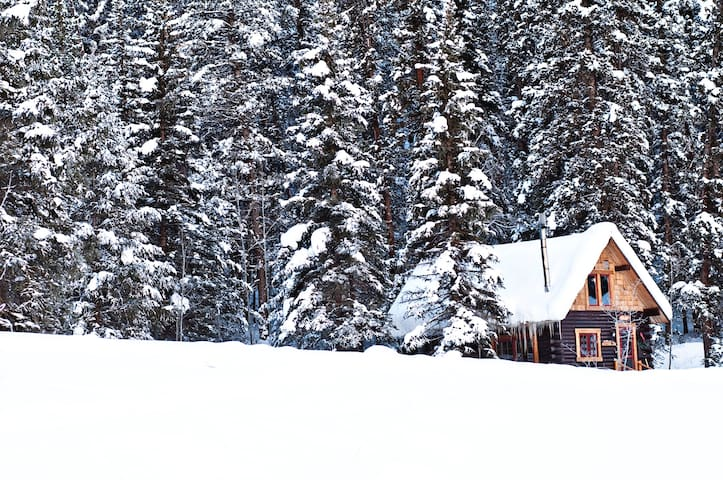 Adorable, clean Cabin just outside Crested Butte