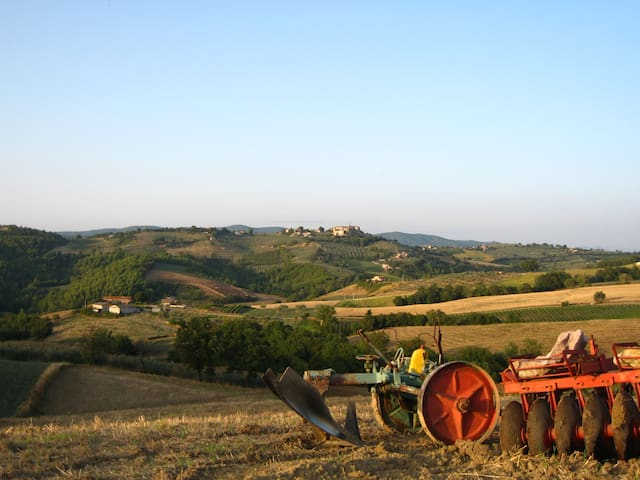 local countryside in Umbria