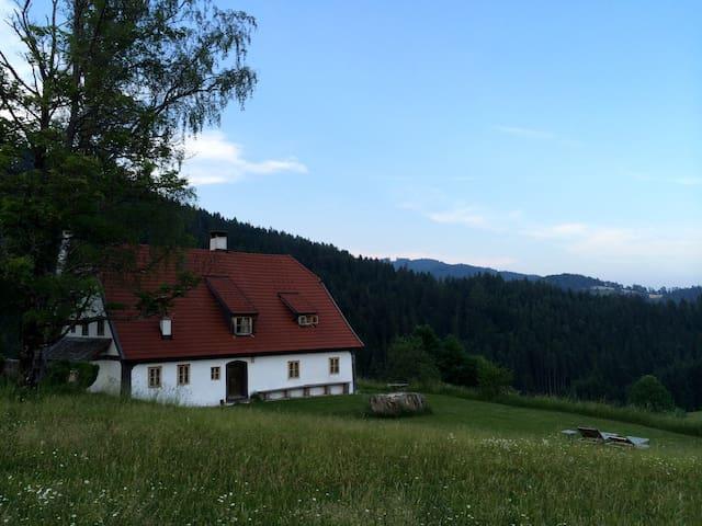 Chalet Hinterbreiteneben - Lunz am See