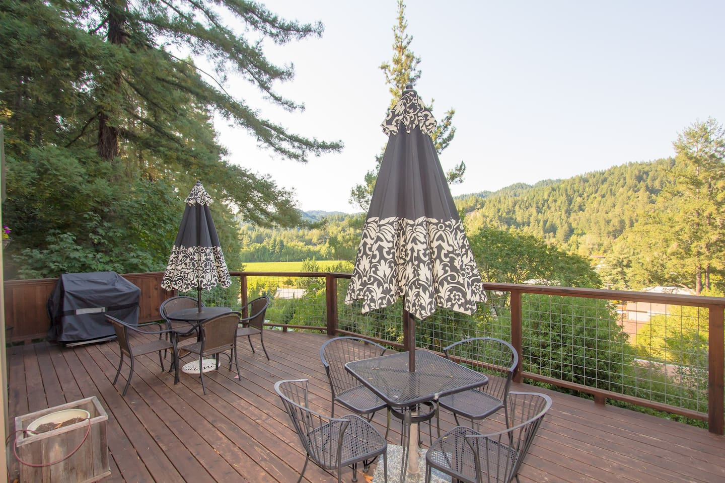 Enjoy the deck with vineyard views!  Outdoor BBQ and dining!