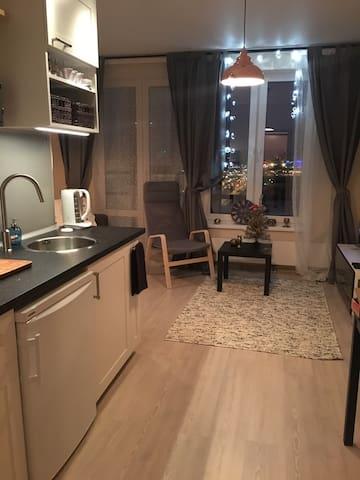 Уютная студия в Приморском районе - Sankt-Peterburg - Huoneisto