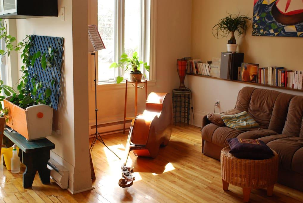 Salon (la contrebasse reste dans sa chambre quand on a des invités :-))