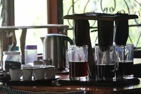 Mountain cabin on an organic coffee farm.