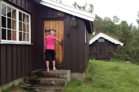 Ustaoset close to Hardangervidda