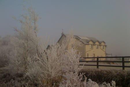 Townspark House - Dům
