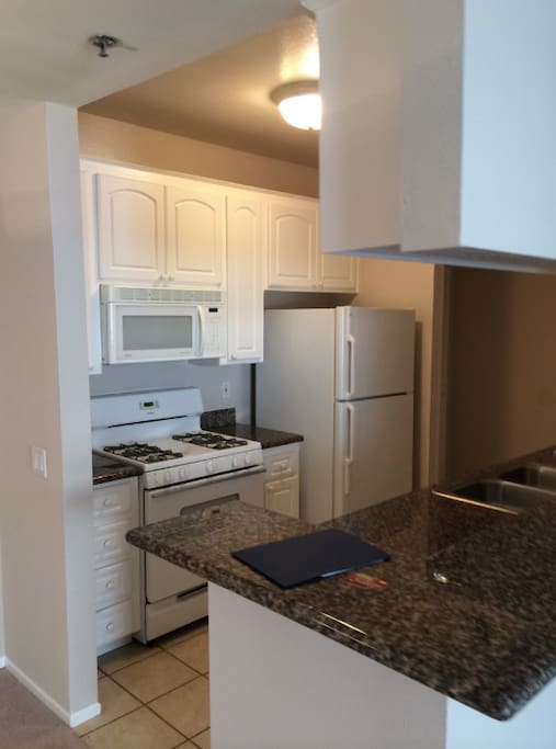 Fully accessable kitchen with garbage disposal and dishwasher