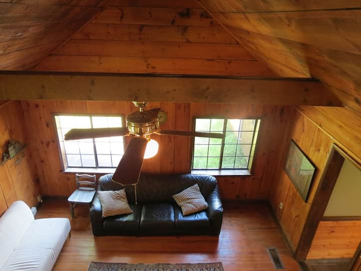 Cabin, Raft & Bike, Scenic Byway, Pets OK 2hrs NYC