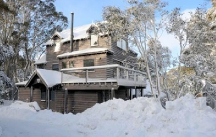 Sunny chalet on snowgum reserve - Dinner Plain - House