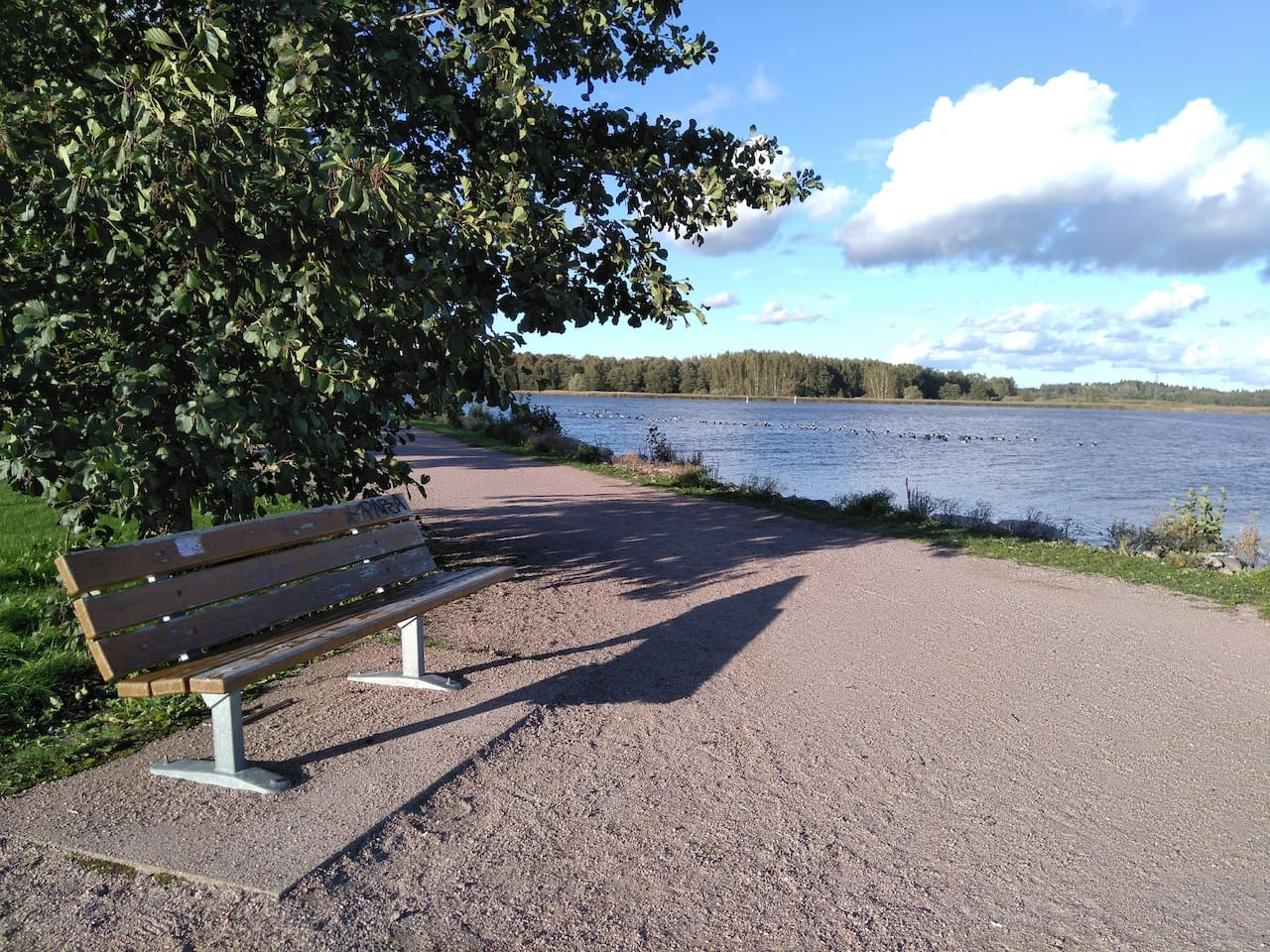 Arabianranta park - only few minutes walk from the apartment.