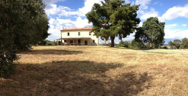 Fattoria in un villaggio Etrusco 3