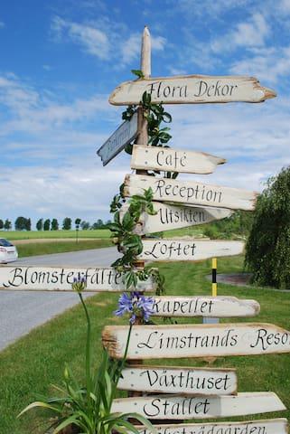Lantligt boende, café och trädgård - Hol