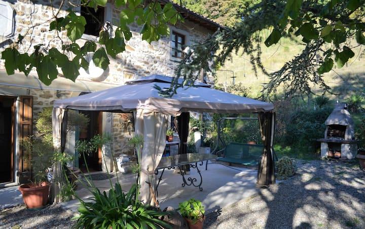 Intero Maniero: Villa Con Piscina Firenze Toscana