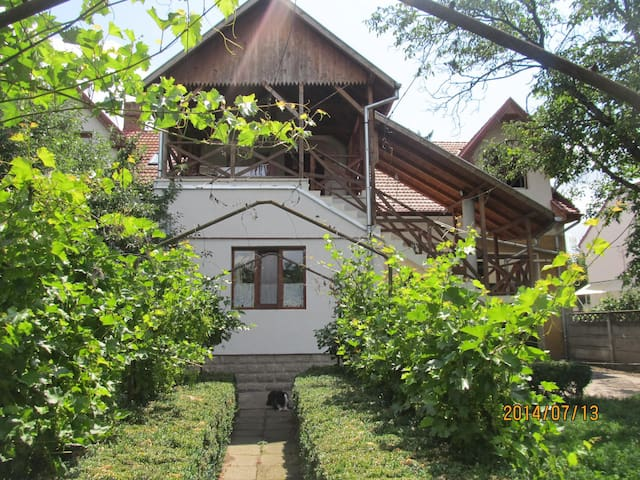 City center villa near the fortress - Târgu Mureș - Apartment
