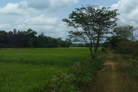 Calm location surrounded by Nature - Horana