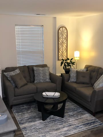 Brand new beautiful luxury apartment in Cville!