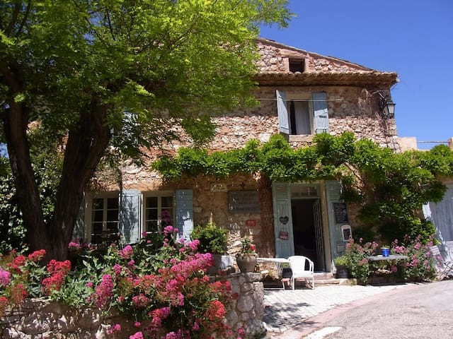 Real Provence experience
