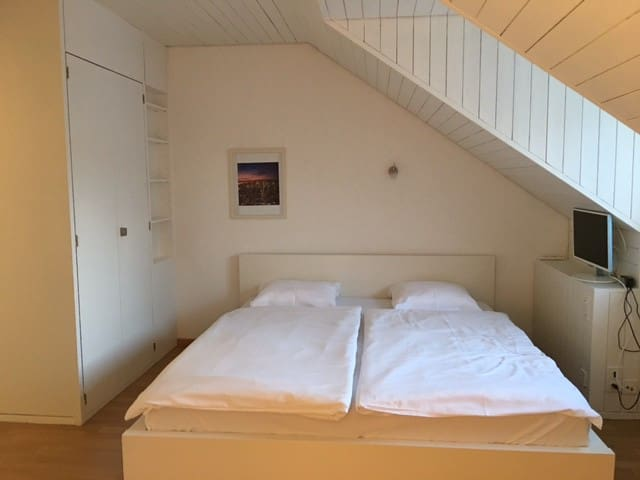 Boutique  studio at the beautiful oldtown - Zürich - Appartement